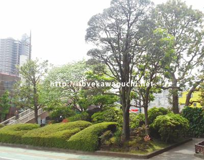 川口市役所の庭